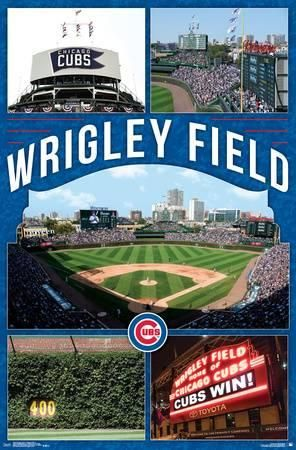 Collect the Fascinating Cubs Live Wallpaper